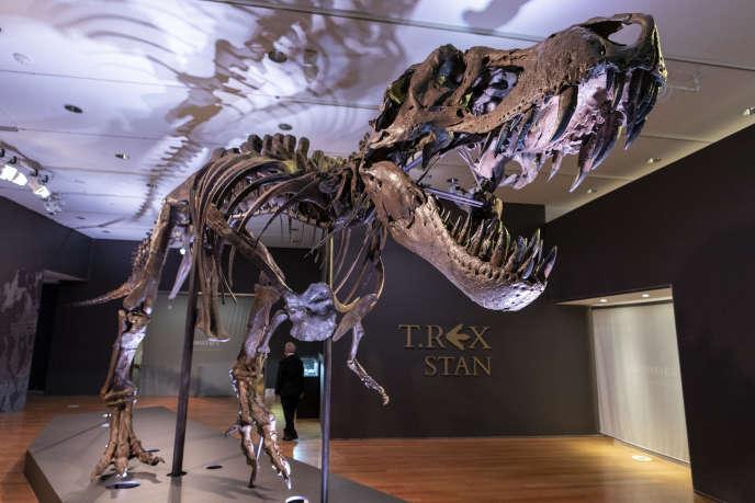Un dinosaure T-REX vendu 31,8 millions de dollars